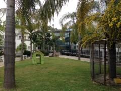 החצר הירוקה