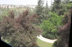 דיור מוגן נופי מוצא בהרי ירושלים
