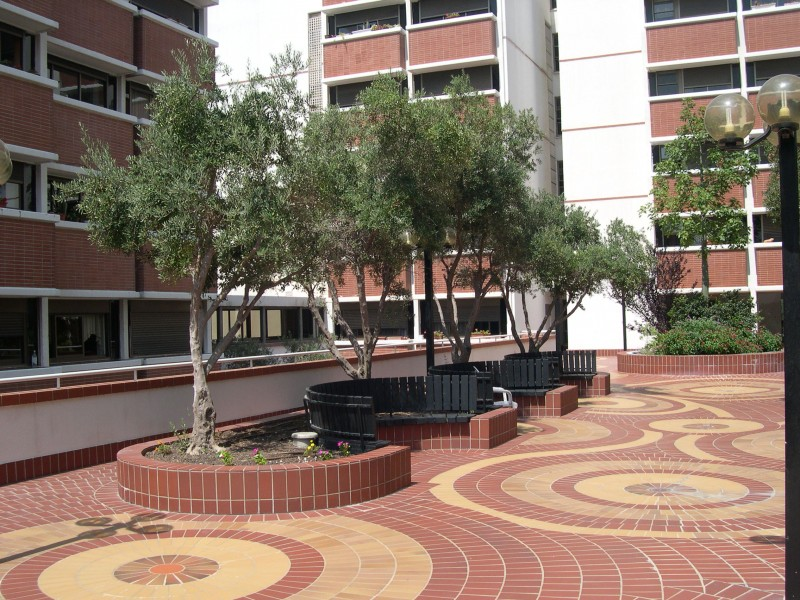 דיור מוגן בחיפה דור כרמל