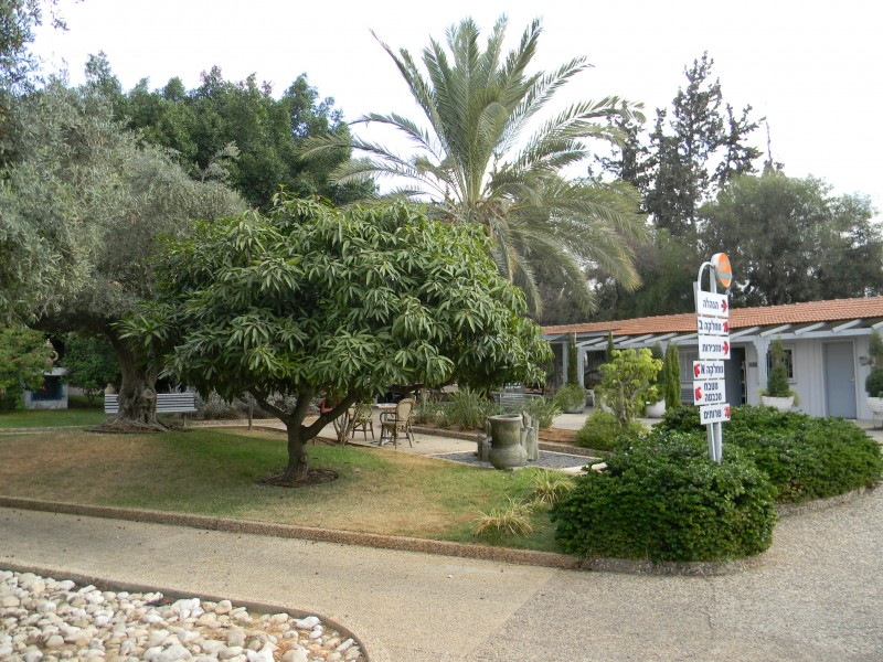 אחוזת אייל בית אבות לתשושים באור יהודה