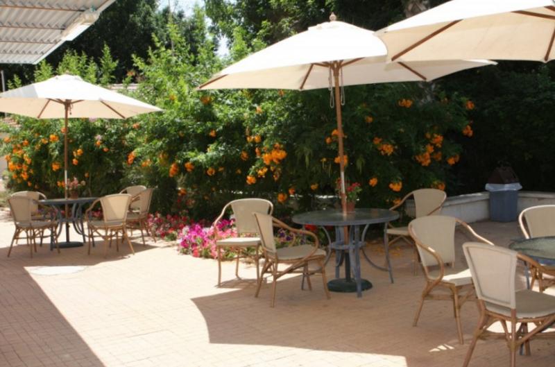 פינות ישיבה מרובות בחצר בית הורים אניטה מילר כהן
