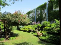 חצר ירוקה ומטופחת בבית הורים זיגפריד מוזס