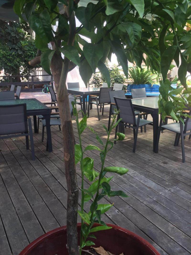 הדיירים יושבים בחצר