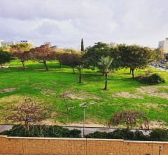 מחלקה סיעודית בתל אביב