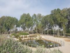 דיור תומך בשרון - מגדלי הים התיכון רמת השרון